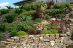 Támfal sziklakert kerti szikla kertépítés - 1024x683 pixel - 506226 byte Támfal sziklakert