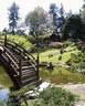 Japánkert képek az internetről - 500x625 pixel - 130257 byte Kerti szikla, sziklakert