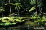Japánkert képek az internetről - 715x468 pixel - 152641 byte Mágnesszelepek, szelepdoboz