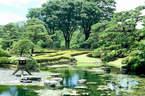 Japánkert képek az internetről - 454x300 pixel - 89257 byte kert felújítás és gyepszőnyeg
