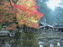 Japánkert képek az internetről - 1024x768 pixel - 413992 byte kert felújítás és gyepszőnyeg