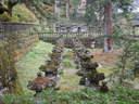 Japánkert képek az internetről - 1024x768 pixel - 349842 byte Gépiföldmunka út és sziklakertépítés