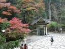 Japánkert képek az internetről - 1024x768 pixel - 392997 byte Gépiföldmunka út és sziklakertépítés, tereprendezés
