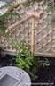 Japánkert képek az internetről - 200x311 pixel - 32197 byte Mediterrán kerítés