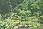 Japánkert képek az internetről - 640x437 pixel - 120345 byte Mediterrán kerítés