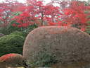 Japánkert képek az internetről - 1024x768 pixel - 455076 byte Mediterrán kerítés
